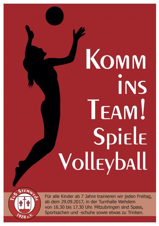Volleyball_Flyer_2017.jpg